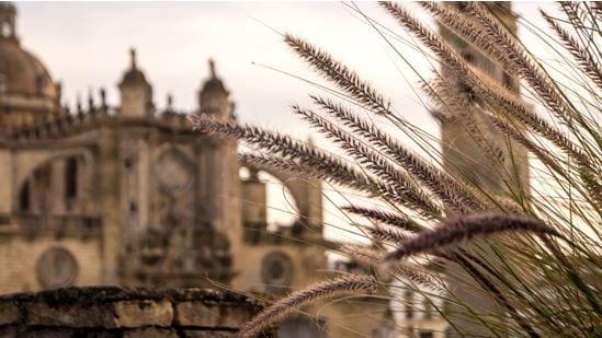 Jerez Hoteles en Andalucia